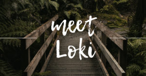 Writing Wednesday: Meet Loki
